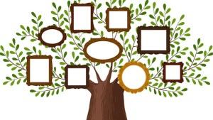 Genealogy Group @ Council on Aging
