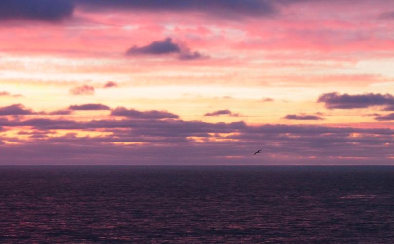 baja-california-sunset-#9