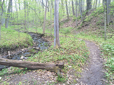 ACRES National Trail Day