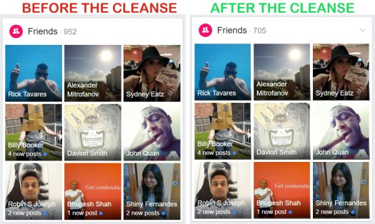 Facebook Cleanse