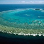 Why Dying Coral Reefs Will Bring Planetary Instability