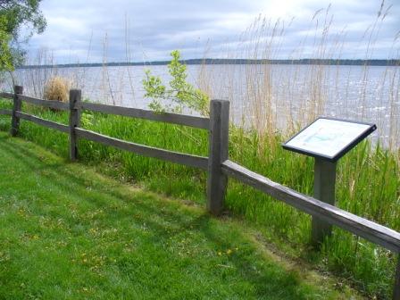 BSU Campus Shoreline Habitat Restoration Project on Lake Bemidji