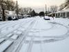 snow-wendell-7587
