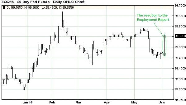 ZQQ16 - 30-Day Fed Funds - Daily OHLC Chart