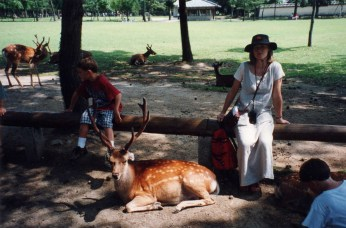 Sitting with deer