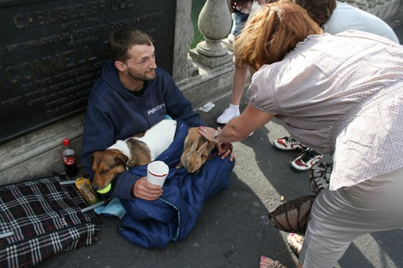 homeless-dogs-13