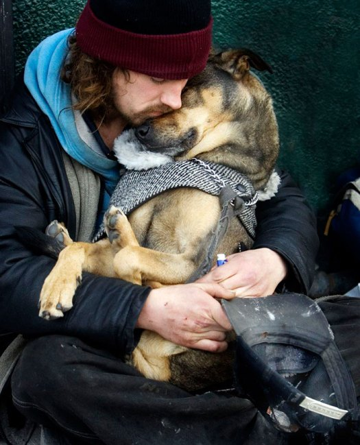 homeless-dogs-3