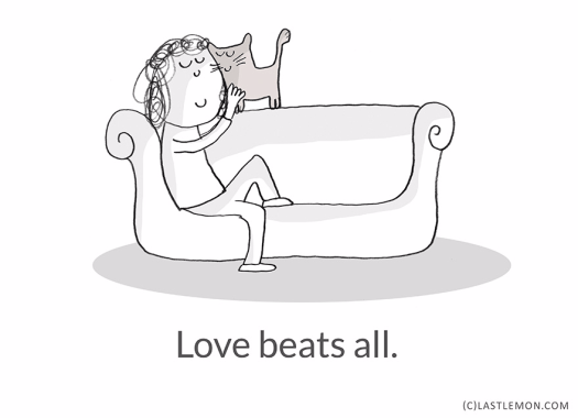 Learn from Cats-10