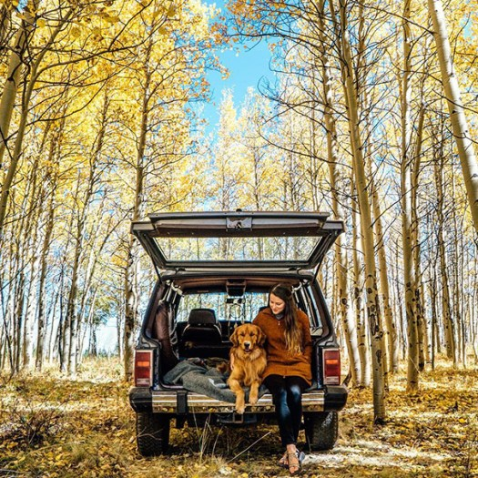 traveling-dog-aspen-the-mountain-pup-instagram-44_1453188316