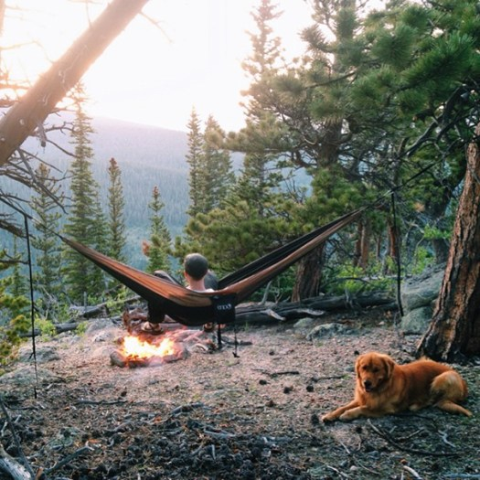 traveling-dog-aspen-the-mountain-pup-instagram-6_1453188316
