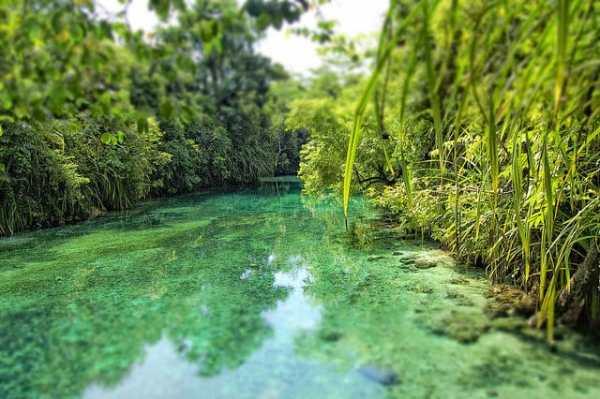 Enchanted River (6)