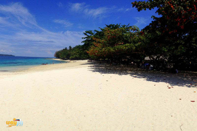 List Top 10 White Sand Beaches To Explore In Samal Island