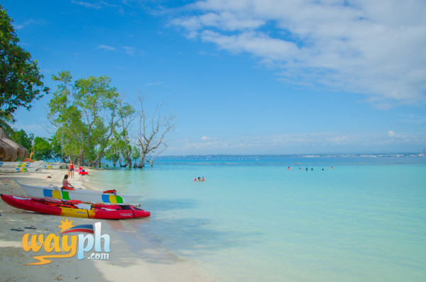 Affordable Beaches In Samal Island Davao