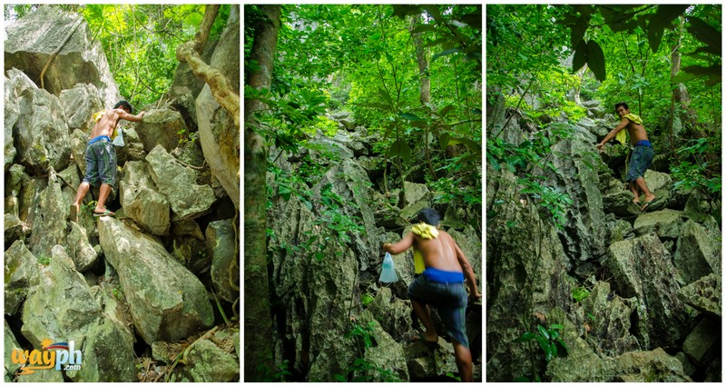 Taraw cliff1
