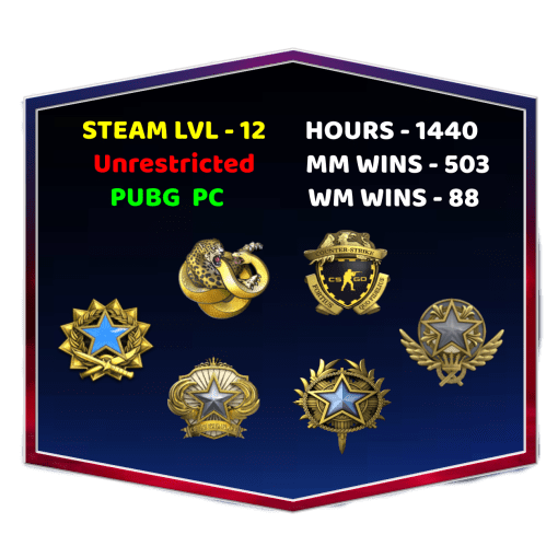 4 Medals CSGO Account With Steam Level 12