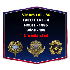 2 Medals CSGO Faceit Account With Steam Level 30