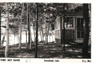Cabin One Postcard