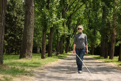 A woman walks on a tree-lined road using a white cane.