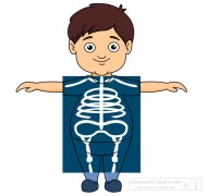 boy taking an x ray clipart