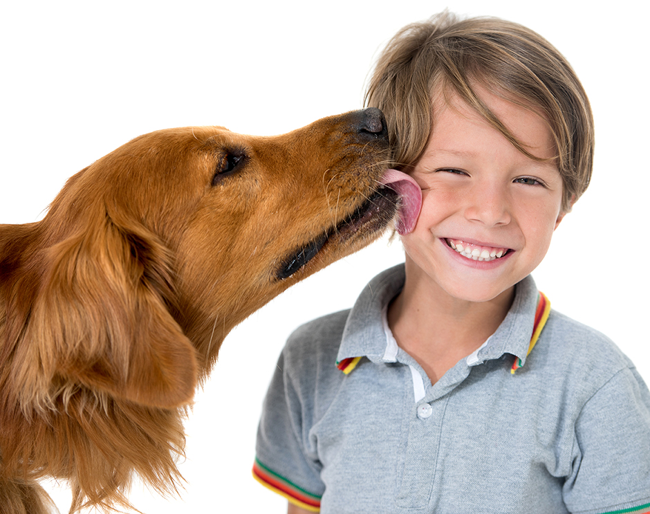 Dog kissing smiling boy