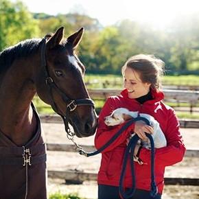 wcptwebbythenumbersgirlwhorse-dog_1