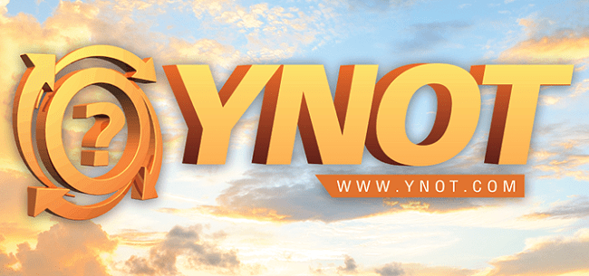 Winners of the 2019 YNOT Awards