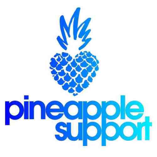 Pineapple Support Corporate Training Initiative