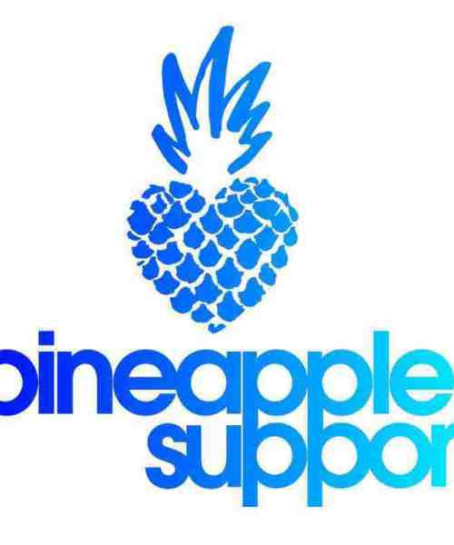 Pineapple Support Relationships Webinar (Feb. 5, 2021)