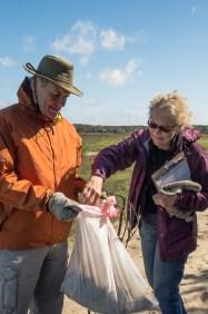 Collecting and recording debris; photo by Kim Novino