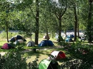 WCV Community Camp-out @ Birds Hill Park