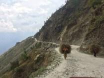 Road to Gatlang