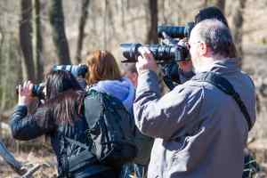 Nature photographers in Frick Park