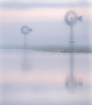 01_Caroline Preece_Canvey Marsh at Dawn