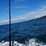 子どもと初体験の船釣り、初心者小4でも様になっていました。