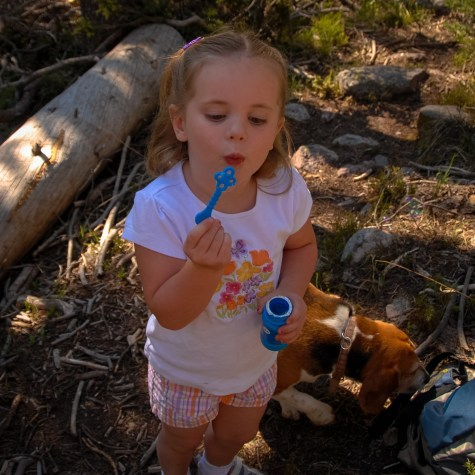 Bubbles during our morning hike.