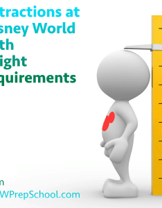 Though disney world is intended to be enjoyed by the whole family some attractions have height minimums keep kids safe also requirements and what do if can   ride rh wdwprepschool