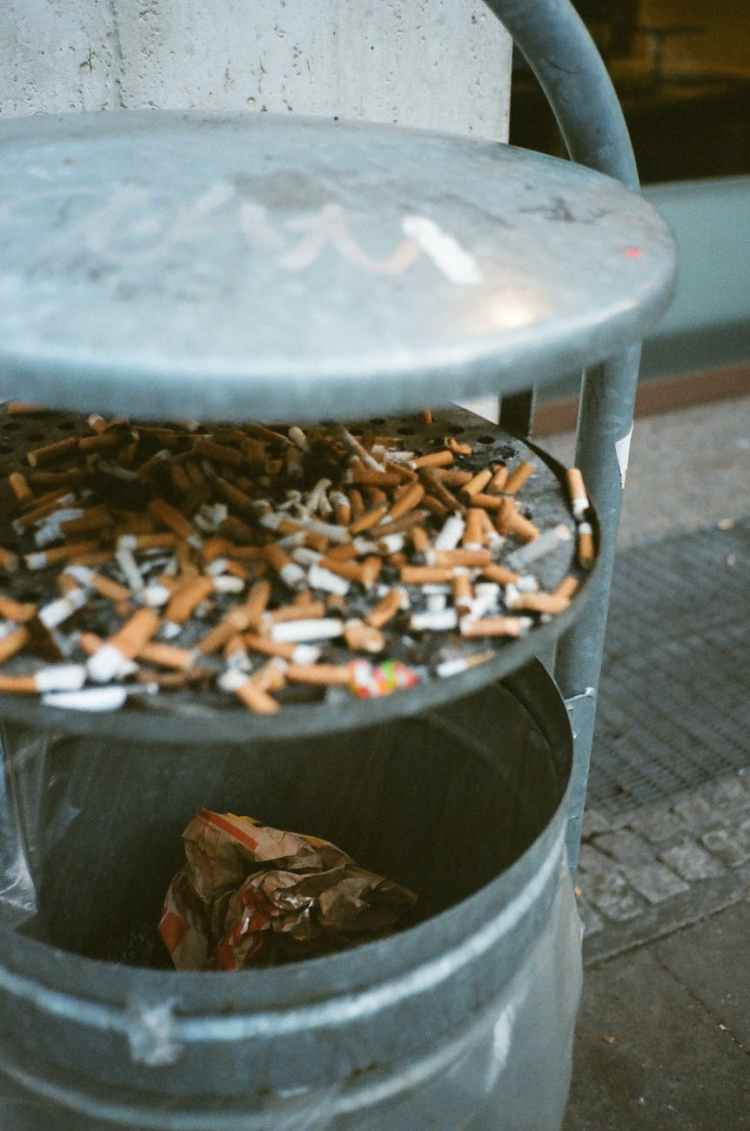 cigarette butts in trash bin
