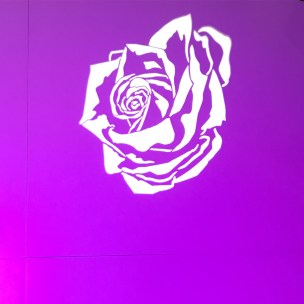 FLC240-CC and FLC230 Projector with Rose GOBO: The eye-catching rose GOBO projected onto our FLC240 Color Changer. Beautiful!