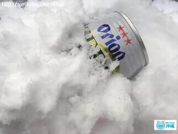 雪オリオン