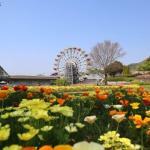 「やまぐちフラワーランド」は花と緑に囲まれた庭園。家族で出かけよう!