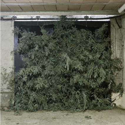 Michel le Belhomme, The Blind Beast, Grand Prix Fotofestiwal 2014, 2.jpg