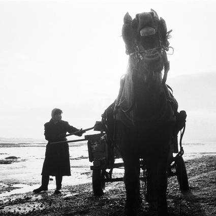 SeacoalAmberFilms 1985 poster image.jpg
