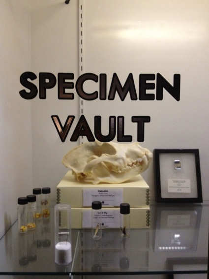 specimen-vault.jpg