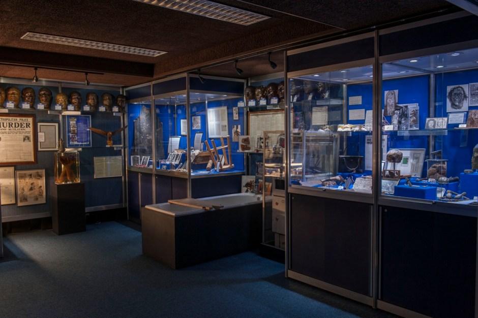 Inside the Metropolitan Police's hidden Crime Museum at New Scotland Yard, 2015 © Museum of London
