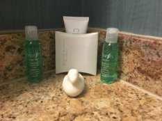 Peabody duck soap
