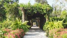 Airlie Gardens bridal walk
