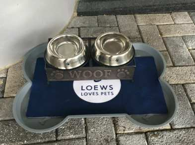 Loews pets