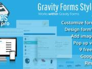 Gravity Forms Styles Pro Add-on 2.7.4
