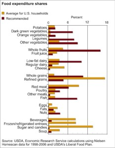 USDA Chart of American Food Purchases vs. Recommendations