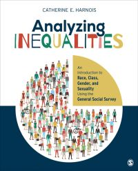 Analyzing Inequalities book cover
